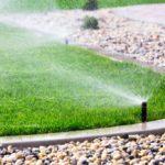 Your Backyard Desperately Needs An Upgrade